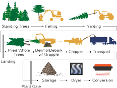 Biomass supply chain